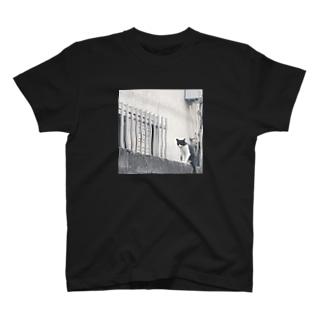 なにかたくらむネコ T-shirts
