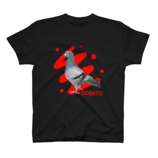 鴿/土鳩/DOBATO T-shirts