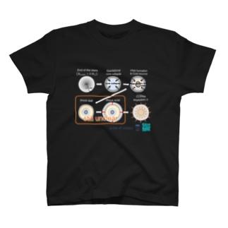 超新星爆発を元素合成から理解する T-shirts