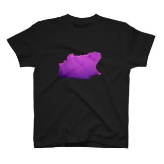北極の氷! T-shirts
