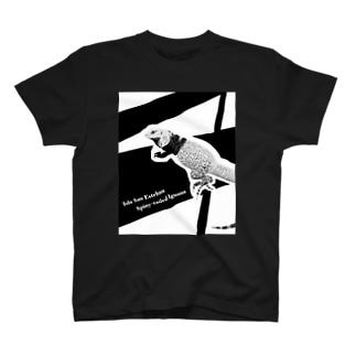 サンエステバントゲオイグアナ黒基調グッズ T-shirts