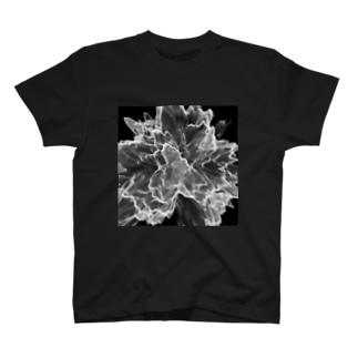 Chaos_1 T-shirts