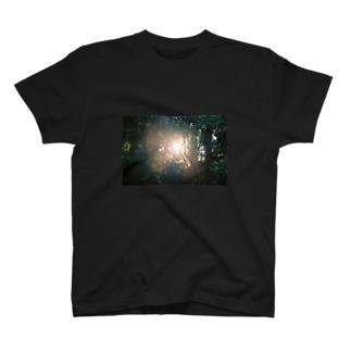 PHOTO,T T-shirts