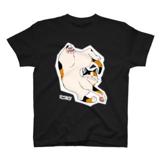 ねじれ猫 T-shirts