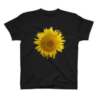 ひまわり2 T-Shirt