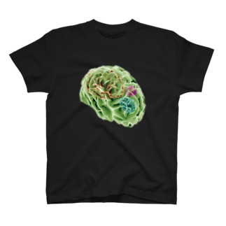 amnesia (BRAINS UP) T-shirts