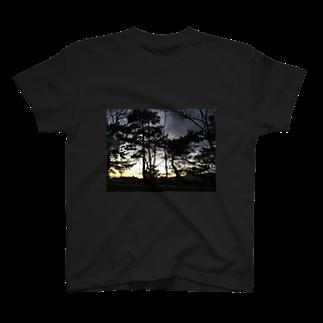Tamzooのシックな景色 T-shirts