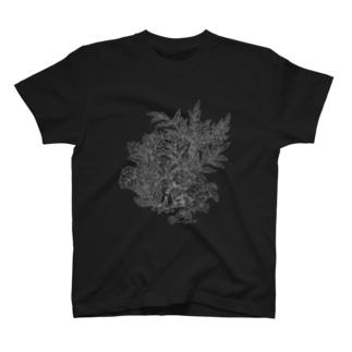 PygmyCat(グレー線ver) T-shirts