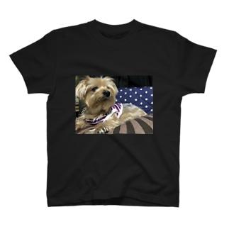 あいけん T-shirts