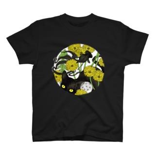 夜舟の黒猫と黒出目金 T-Shirt