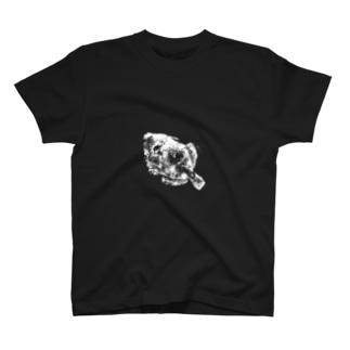 カワハギTシャツ T-shirts