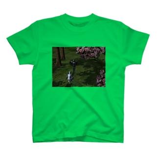 桜の謁見 Tシャツ
