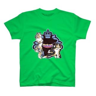 Miracle spin shelties.(ブルーマール&トライ) T-shirts