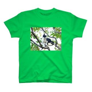 木登りミチザネ T-shirts
