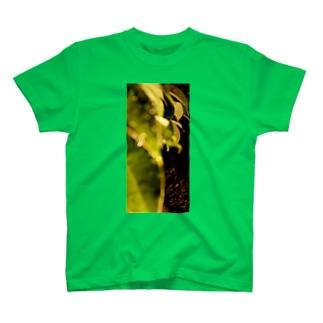 夜の葉 T-shirts