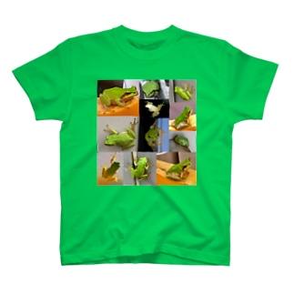 「写真集」~かえる~ T-shirts