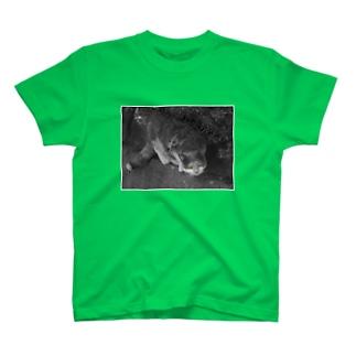 金目 T-shirts