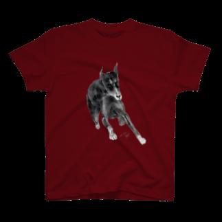 楓[Kaede]のDoberman T-shirts
