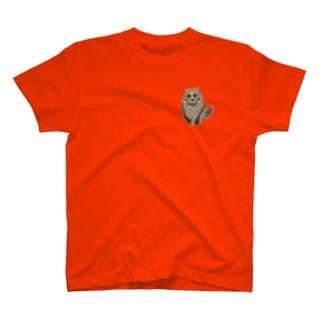 たぬー T-shirts