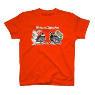 コリンウズラとカンムリウズラ T-shirts