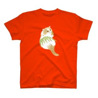 エキゾのがんもどきちゃん T-shirts