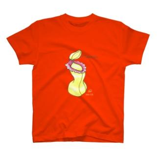 食虫植物 Nepenthesシリーズ N.ventricosa 在来系 T-shirts