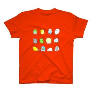ルリマメハごろごろ T-shirts