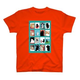 猫の窓萌黄(もえぎ) T-Shirt