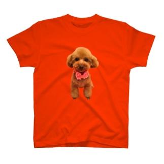 いろちがい T-shirts