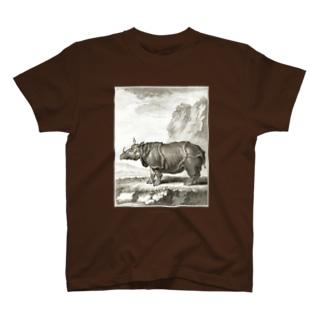 ル·ライノセラス(犀・サイ) - Getty Search Gateway T-shirts