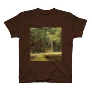 F1 T-shirts