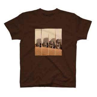 とらちゃぼんイカミミモドキ(オトナ) T-shirts