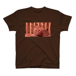 ベロンベロンごんざ T-shirts