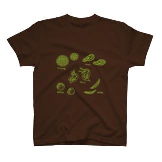 小さな生きもの T-shirts
