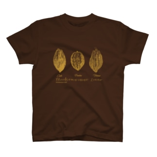 カカオポッド3種イラスト T-shirts