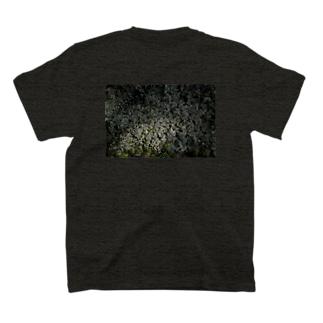 草木(2019/03/25)日差し T-shirts