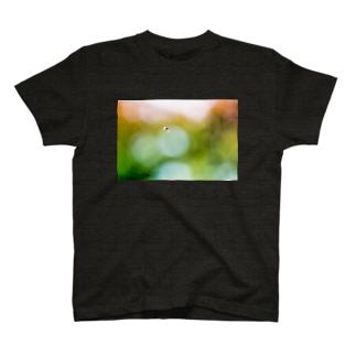 Ushun/ABU(B) T-shirts