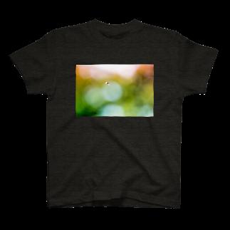 UshunのUshun/ABU(B) T-shirts