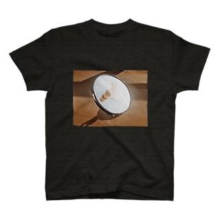 haelu T-shirts