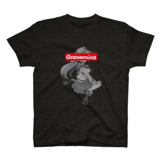 グノセミナ13 T-shirts