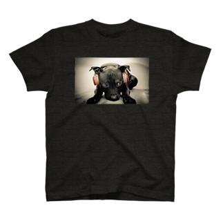 toyo'sチョイス! T-shirts