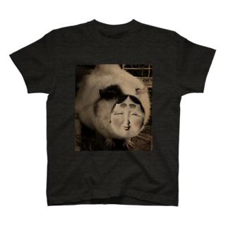 開けてはならぬむぎ茶 T-shirts