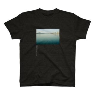 QRS-01 SEOUL 2012 (濃い色系専用) T-shirts