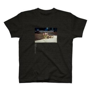 QRS-02 SEOUL 2012 (濃い色系専用) T-shirts