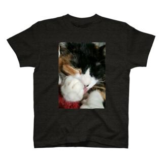 三毛猫((ネコの手) T-shirts