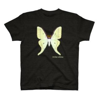 オオミズアオ T-shirts
