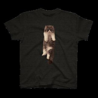 むぎ&みその全身ねこ T-shirts