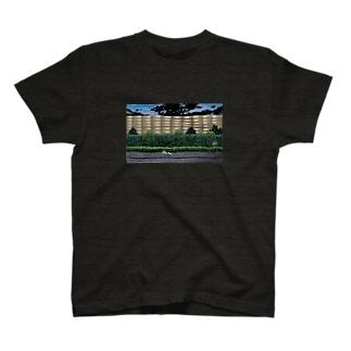 ハナシタナガネコの夜散歩  T-shirts