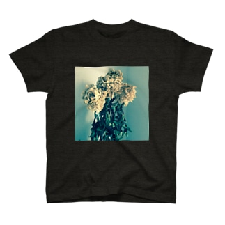 夕暮れと芍薬のドライフラワー T-shirts