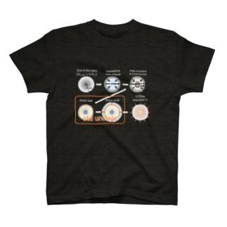 ニュートリノ駆動モデル(カラー) T-shirts